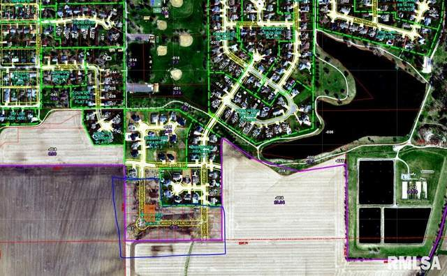 404 Burr Oak Drive, Williamsville, IL 62693 (#CA1009734) :: RE/MAX Professionals
