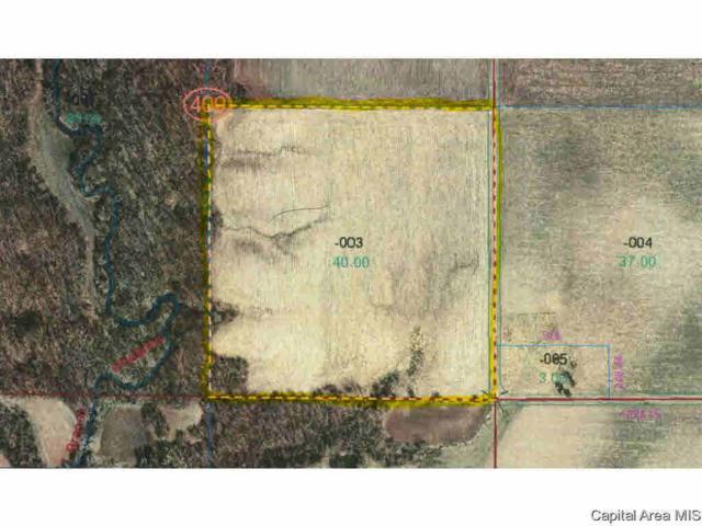 Stead Rd., Girard, IL 62640 (#CA177166) :: Adam Merrick Real Estate