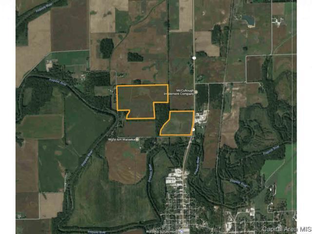 1948 E 2020 Road, Watseka, IL 60970 (#CA183222) :: Paramount Homes QC