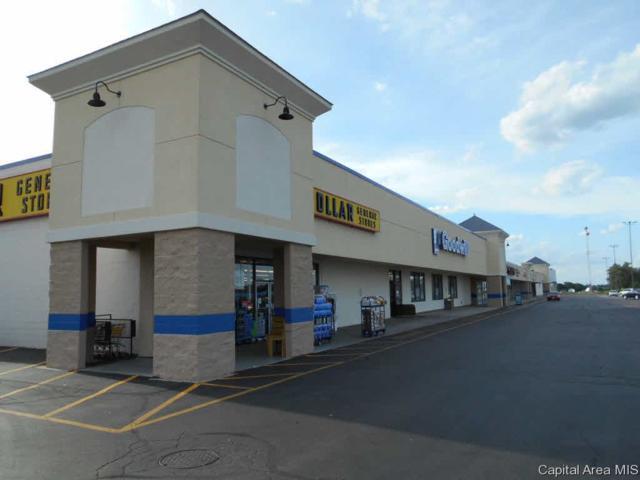 1200 Woodlawn Rd, Lincoln, IL 62656 (#CA174743) :: Killebrew - Real Estate Group