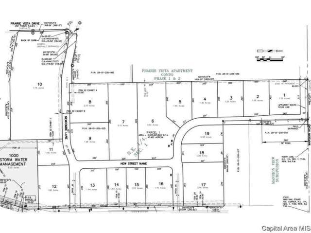 1529 N Main, Chatham, IL 62629 (#CA183328) :: Adam Merrick Real Estate