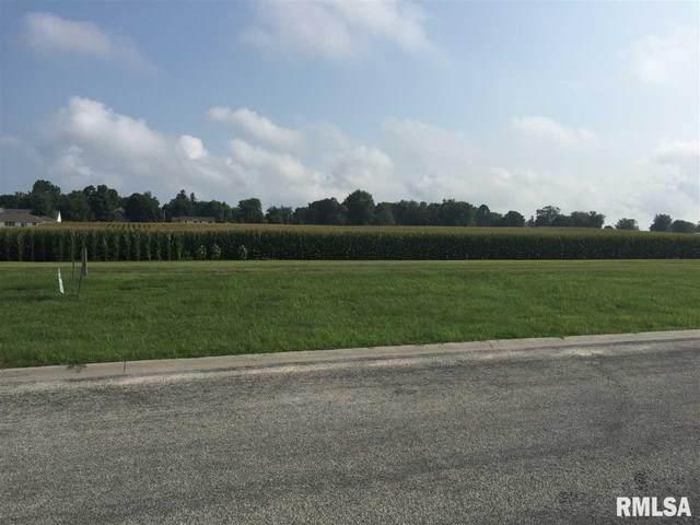 000 Valley View Drive, Cambridge, IL 61238 (#QC4200213) :: Paramount Homes QC