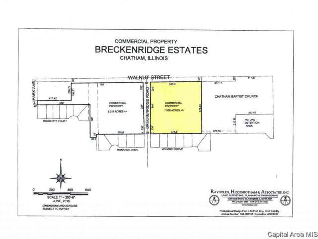 1000 E Walnut, Chatham, IL 62629 (#CA175813) :: Adam Merrick Real Estate