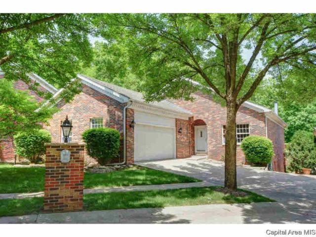 225 Timber Ridge Road, Springfield, IL 62702 (#CA181540) :: Killebrew - Real Estate Group