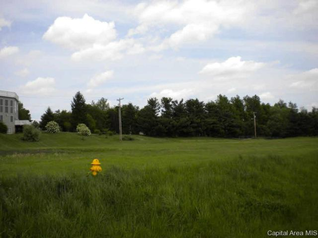 West Morton, Jacksonville, IL 62650 (#CA182728) :: Killebrew - Real Estate Group