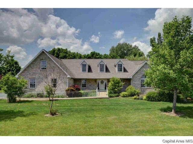 11169 N Old Route 66, Williamsville, IL 62693 (#CA190548) :: Killebrew - Real Estate Group