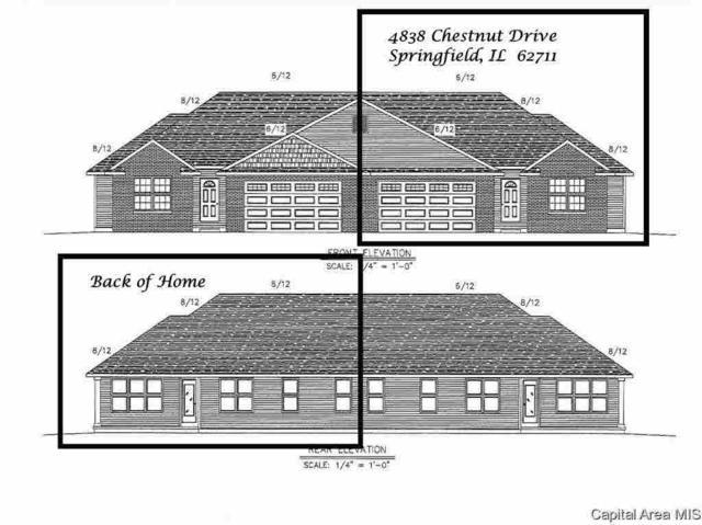 4838 Chestnut Drive, Springfield, IL 62711 (#CA191085) :: Killebrew - Real Estate Group