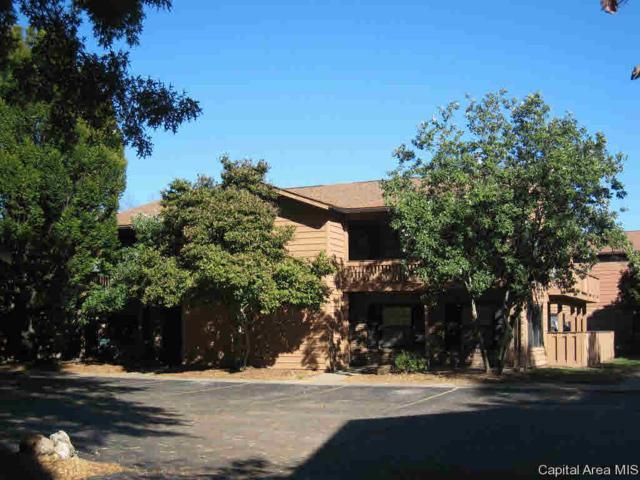 160 S Durkin Dr # 11, Springfield, IL 62704 (#CA191566) :: Adam Merrick Real Estate