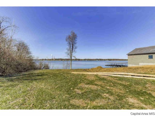 301 Harbor Point Pl, Springfield, IL 62712 (#CA191789) :: Killebrew - Real Estate Group