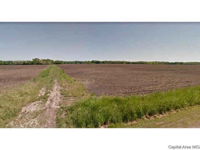 Spartan Drive, Chatham, IL 62629 (#CA191818) :: Adam Merrick Real Estate