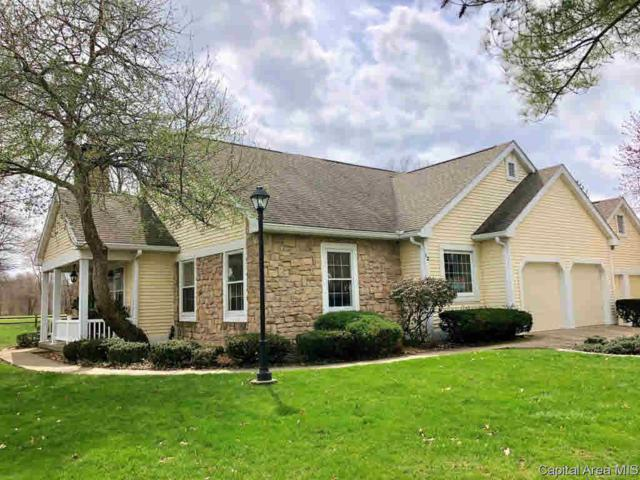 12 Chimney View, Springfield, IL 62707 (#CA191960) :: Killebrew - Real Estate Group