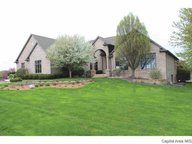 1160 Old Tipton School, Sherman, IL 62684 (#CA192795) :: Killebrew - Real Estate Group