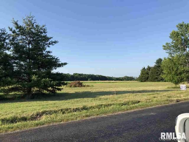 4757 W Divernon Road, Auburn, IL 62615 (#CA193823) :: Campo Realty Inc.