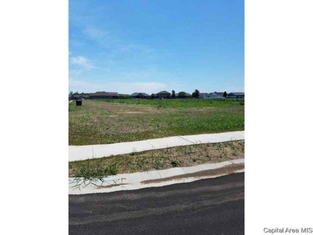 Oak Park Estates 4th Addn, Springfield, IL 62711 (#CA174031) :: Killebrew - Real Estate Group