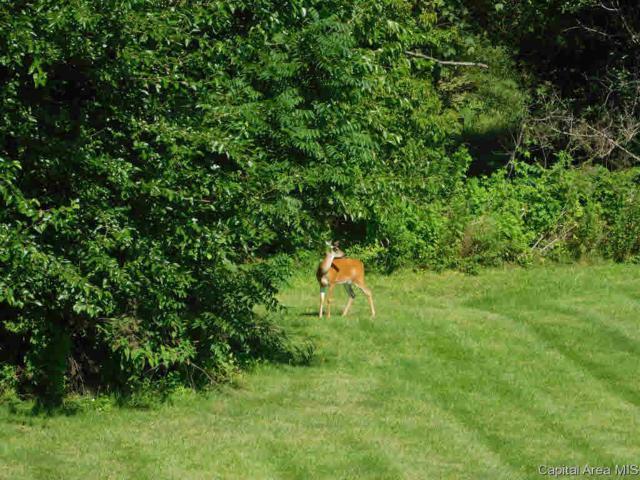 105 Manor Hill, Chatham, IL 62629 (#CA184983) :: Nikki Sailor | RE/MAX River Cities