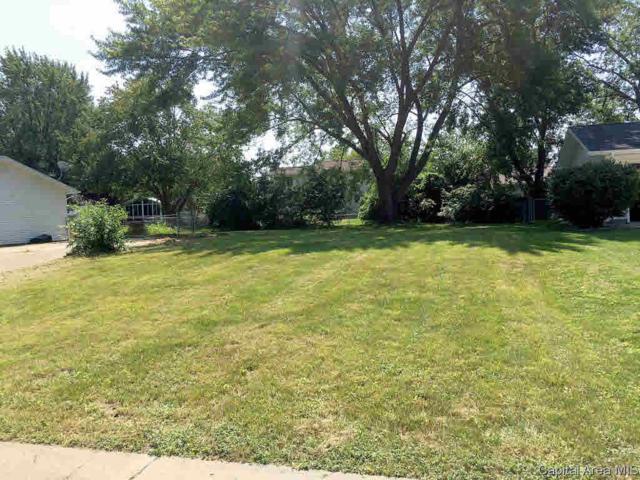 2216 Croydon Drive, Springfield, IL 62703 (#CA185653) :: Killebrew - Real Estate Group