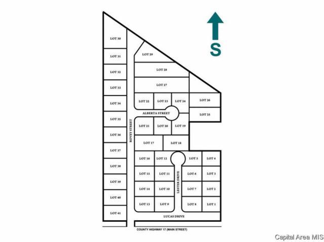 LOTS 1-41 Sunset Village, Farmersville, IL 62533 (#CA186215) :: Adam Merrick Real Estate
