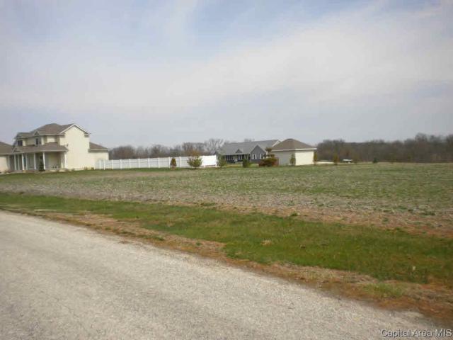 110 Peterson, Jacksonville, IL 62650 (#CA186871) :: Killebrew - Real Estate Group
