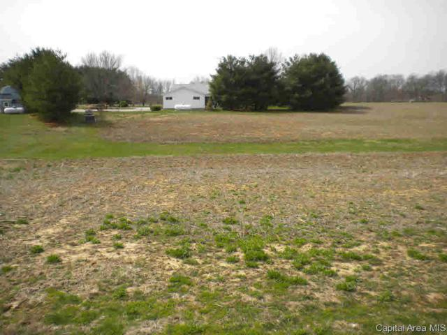109 Peterson Estates, Jacksonville, IL 62650 (#CA186872) :: Killebrew - Real Estate Group