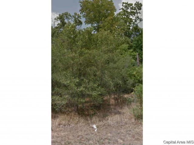 1138 Eagle Dr, Meredosia, IL 62665 (#CA191635) :: Killebrew - Real Estate Group