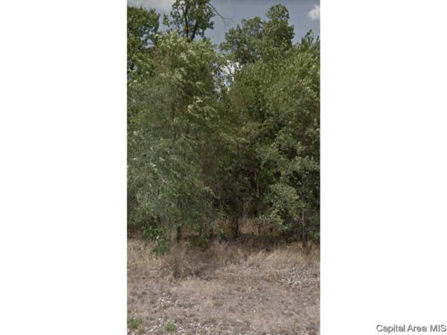 1134 Eagle Dr, Meredosia, IL 62665 (#CA191636) :: Killebrew - Real Estate Group