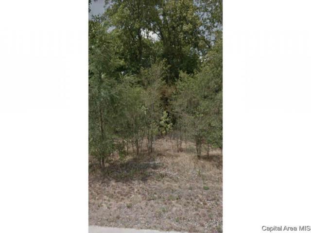 1130 Eagle Dr, Meredosia, IL 62665 (#CA191637) :: Killebrew - Real Estate Group