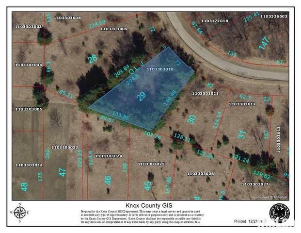 29 Forest View Road, Dahinda, IL 61428 (#PA1176052) :: Killebrew - Real Estate Group
