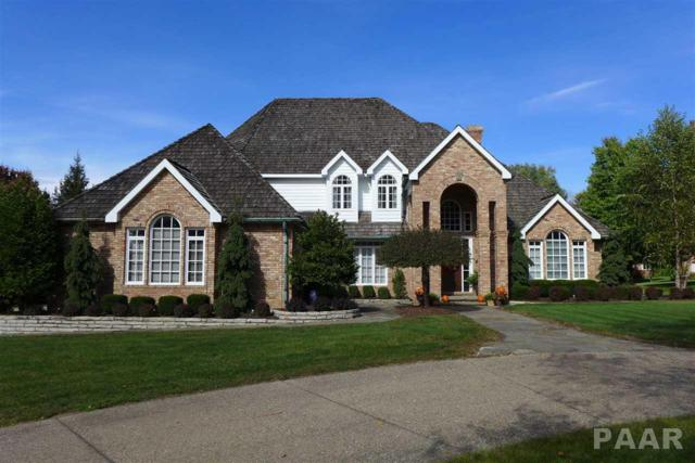 10209 W Bridgeport Way, Hanna City, IL 61536 (#1177619) :: Adam Merrick Real Estate