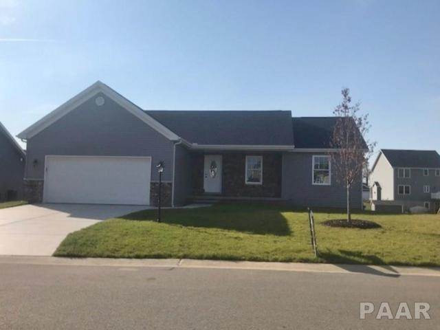 301 Elgin, Washington, IL 61571 (#1183098) :: Adam Merrick Real Estate