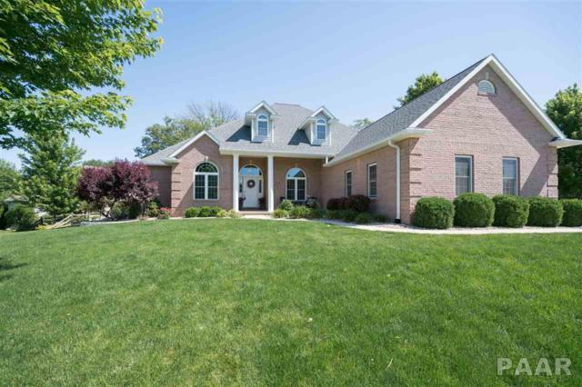 903 Mulberry Court, Germantown Hills, IL 61548 (#1184425) :: RE/MAX Preferred Choice