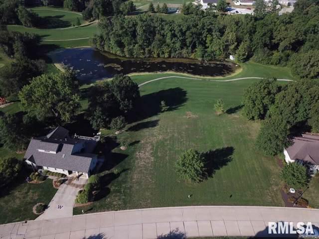 1313 Woodland Trail, Macomb, IL 61455 (#PA1184958) :: Paramount Homes QC