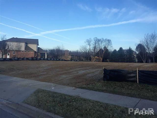 67 Diamond Point, Morton, IL 61550 (#1190176) :: Adam Merrick Real Estate