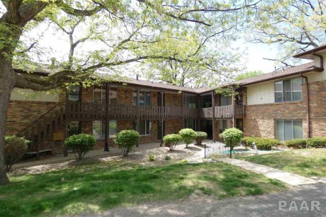 169 E Oak Cliff Court #105, Peoria, IL 61614 (#1191273) :: Adam Merrick Real Estate