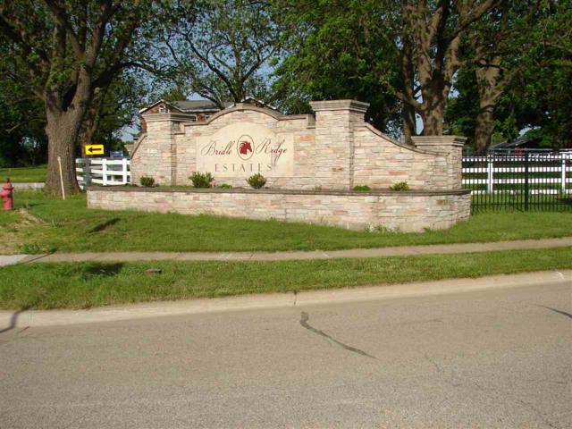 6 Stallion Way, Goodfield, IL 61742 (#PA1194142) :: Paramount Homes QC