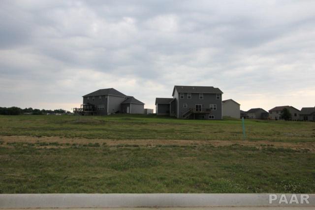 7100 N Water Oak Drive, Edwards, IL 61528 (#PA1195069) :: Killebrew - Real Estate Group