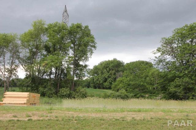 7107 N Water Oak Drive, Edwards, IL 61528 (#PA1195073) :: Killebrew - Real Estate Group