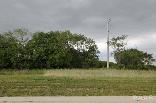 7123 N Water Oak Drive, Edwards, IL 61528 (#PA1195077) :: Killebrew - Real Estate Group