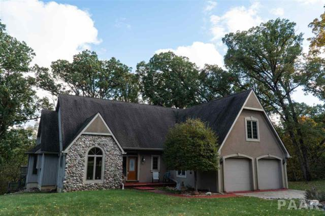 131 Lakeside Place, Dahinda, IL 61428 (#1196047) :: Adam Merrick Real Estate