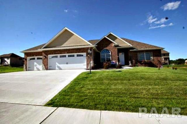 6427 W Sommer Place Boulevard, Edwards, IL 61528 (#1197041) :: Adam Merrick Real Estate