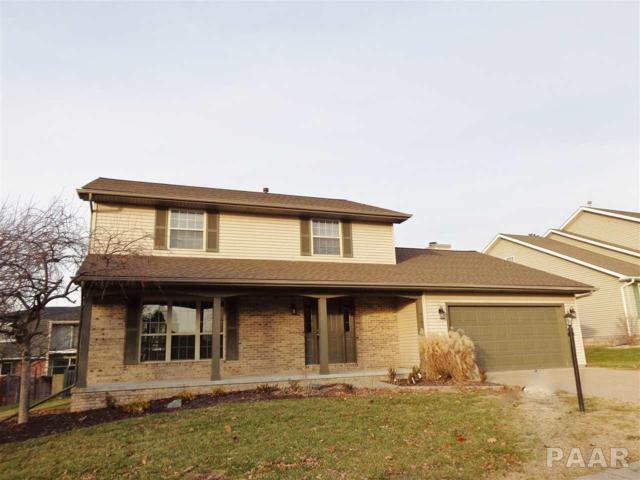 4101 W Rustic Hollow Drive, Peoria, IL 61615 (#1197298) :: The Bryson Smith Team