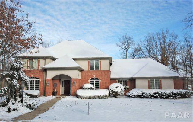 11723 N Strathmoore Court, Dunlap, IL 61525 (#1197644) :: Adam Merrick Real Estate
