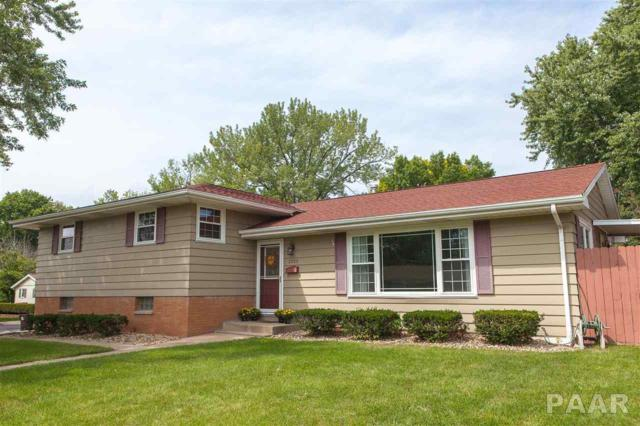 2523 W Castle Court, Peoria, IL 61614 (#1197762) :: Adam Merrick Real Estate