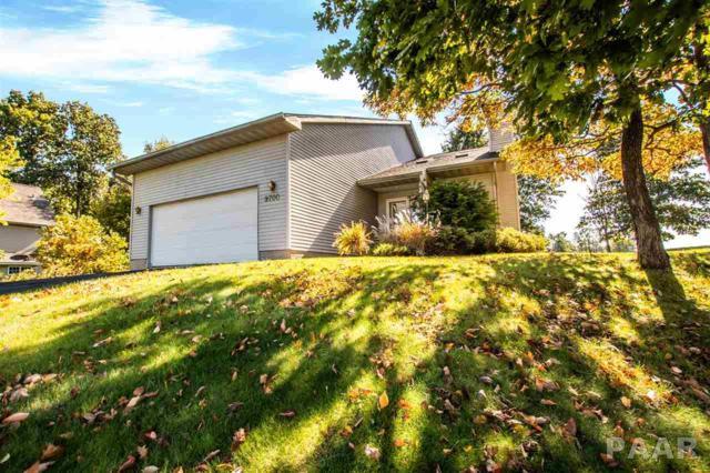 9700 W Lake Lancelot Drive, Mapleton, IL 61547 (#1197818) :: Adam Merrick Real Estate