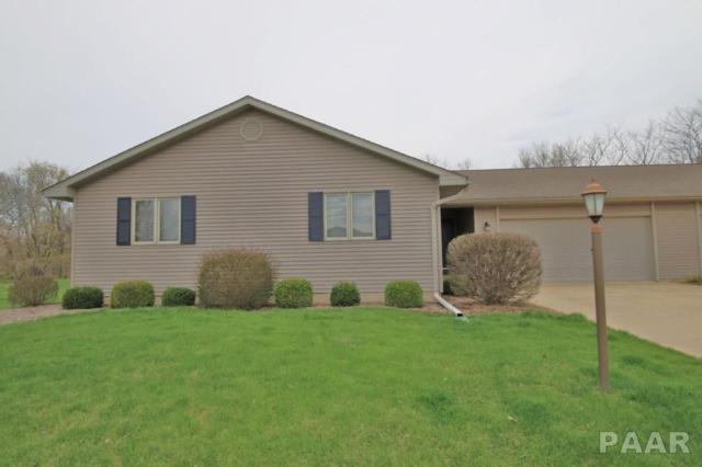 17 Sawmill Lake, Henry, IL 61375 (#PA1203343) :: Killebrew - Real Estate Group