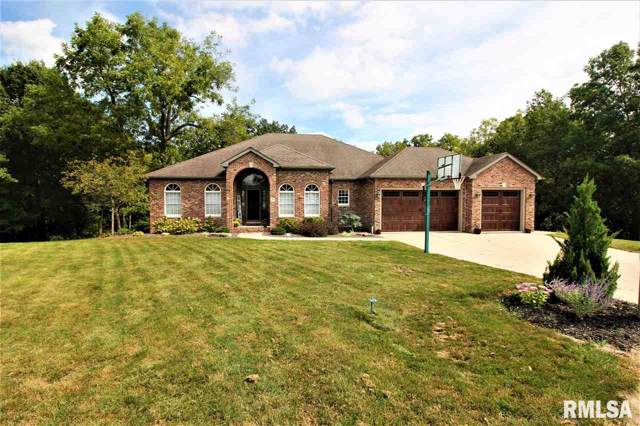 30 Timberline Lane, Sherman, IL 62684 (#CA2775) :: Killebrew - Real Estate Group