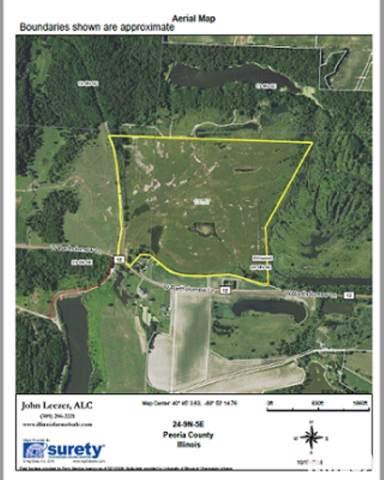 00 Bartholomew Road, Elmwood, IL 61529 (#PA1209921) :: Adam Merrick Real Estate
