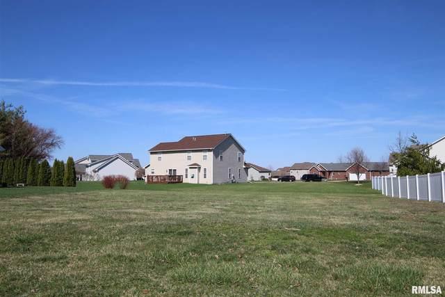 1325 Cedarlake Drive, Metamora, IL 61548 (#PA1222041) :: RE/MAX Preferred Choice