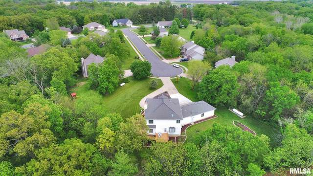 6023 W Deer Trace Court, Dunlap, IL 61525 (MLS #PA1225123) :: BN Homes Group