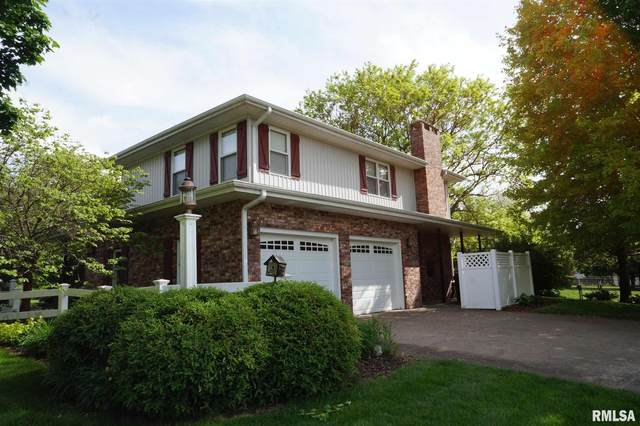 401 Oakwood Place, Geneseo, IL 61254 (MLS #QC4221882) :: BN Homes Group