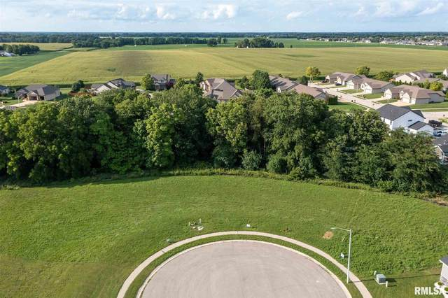 2801 Corporal Place, Springfield, IL 62711 (#CA1007565) :: Kathy Garst Sales Team